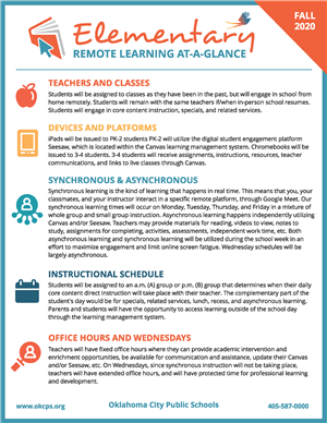 Elementary Remote Learning